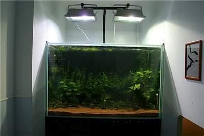640 X 427 38.3 Kb DIY (сделай сам) в аквариуме.