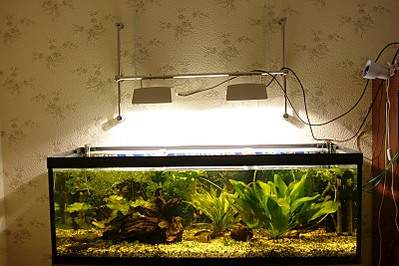 800 X 533 119.6 Kb 640 X 427 38.3 Kb DIY (сделай сам) в аквариуме.
