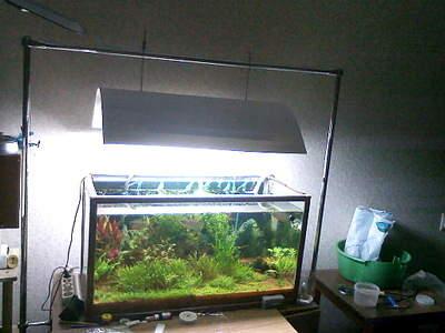 1024 X 768 249.6 Kb 800 X 533 119.6 Kb 640 X 427 38.3 Kb DIY (сделай сам) в аквариуме.