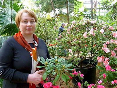 800 X 600 308.6 Kb 'Сад в стекле'. Композиции из растений.