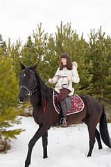 1920 X 2880 432.3 Kb Лошади и пони для фотосессий