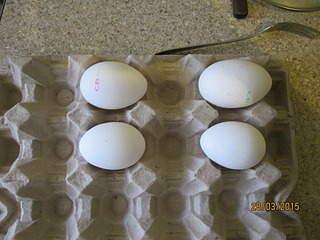 1920 X 1440 602.6 Kb ПФ 'Чайковская': ударим СП по яйцам!