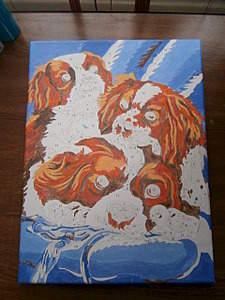 1920 X 2560 416.4 Kb 1920 X 2560 599.9 Kb Кавалер-кинг-чарльз-спаниель. Собака, создающая комфорт. Питомник Auroconcurr.