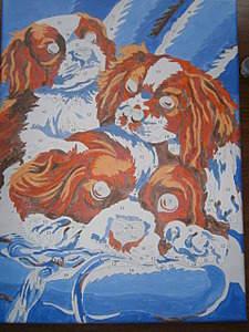 1920 X 2560 534.6 Kb 1920 X 2560 416.4 Kb 1920 X 2560 599.9 Kb Кавалер-кинг-чарльз-спаниель. Собака, создающая комфорт. Питомник Auroconcurr.