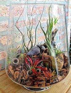 570 X 741 103.8 Kb 'Сад в стекле'. Композиции из растений.