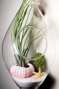 570 X 859 141.2 Kb 570 X 760 118.3 Kb 640 X 1024 129.0 Kb 333 X 500 33.4 Kb 'Сад в стекле'. Композиции из растений.
