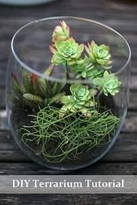 600 X 895 146.4 Kb 'Сад в стекле'. Композиции из растений.