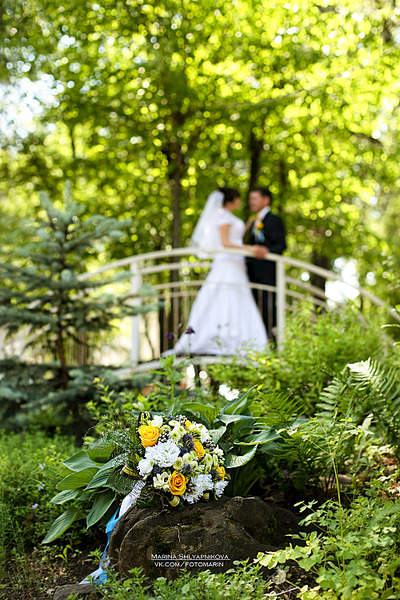 1000 X 1500 251.1 Kb Ваш фотограф Марина Шляпникова. Свадебная съемка. Фотопрогулки на природе.