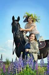 1112 X 1680 210.3 Kb Лошади и пони для фотосессий