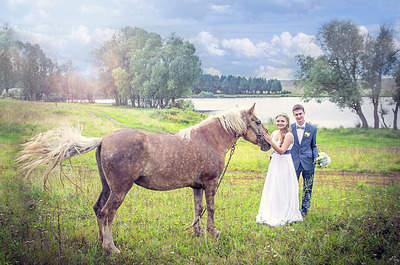 1310 X 868 249.5 Kb Свадьбы 2015