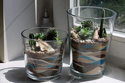 800 X 533 165.0 Kb 'Сад в стекле'. Композиции из растений.