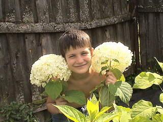 1152 X 864 427.2 Kb Продажа редких растений из питомника 'Мой сад'