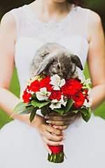 644 X 1024 82.2 Kb 1280 X 853 193.4 Kb 1280 X 853 140.6 Kb 1280 X 853 254.8 Kb Выездная регистрация свадьбы в Ижевске