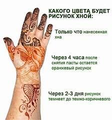 522 X 557 54.6 Kb Роспись хной (мехенди)
