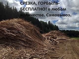 604 X 453 131.4 Kb Доска , Брус -из зеленого леса! Щепа, Горбыль, Срезка, Опил, Бесплатно! фото