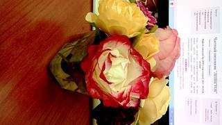 1920 X 1080 540.1 Kb Саженцы английских роз (ЗКС), флоксов, дельфиниумов, стол.винограда и др.