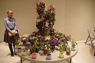 448 X 297 155.7 Kb 448 X 297 168.6 Kb 448 X 297 158.0 Kb Выставка-продажа редких комнатных растений в Ижевске (3-4 октября, ТЦ ФЛАГМАН).
