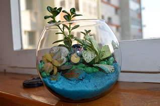 1920 X 1271 206.2 Kb 'Сад в стекле'. Композиции из растений.