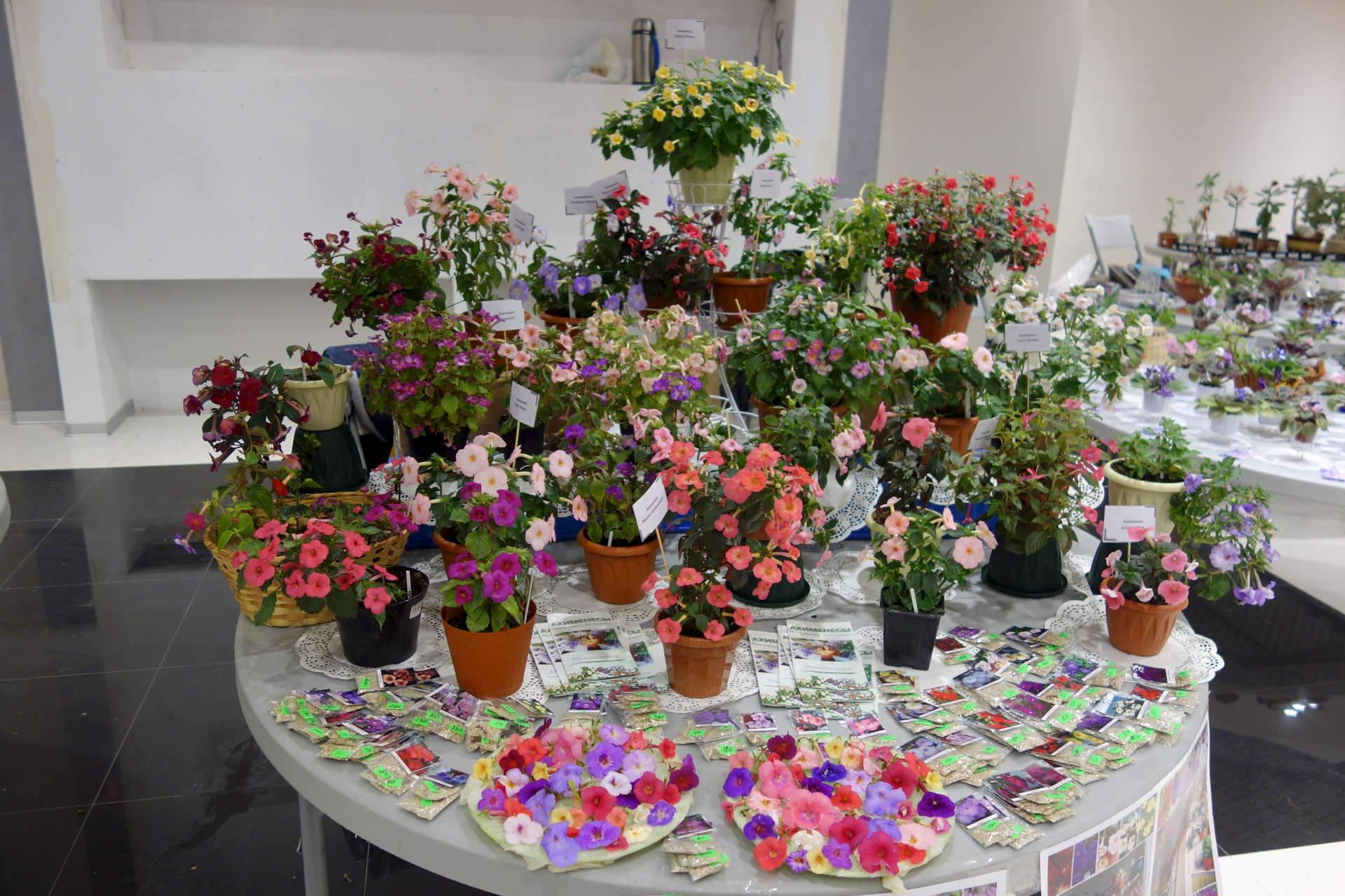 Оптом цветы на заказ екатеринбург уралмаш, цветы для
