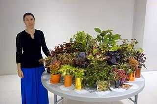 1920 X 1280 238.4 Kb 1920 X 1280 378.8 Kb 1920 X 1280 255.4 Kb 1920 X 1280 264.9 Kb Выставка-продажа редких комнатных растений в Ижевске (3-4 октября, ТЦ ФЛАГМАН).