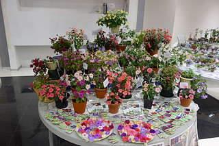 1920 X 1280 335.2 Kb 640 X 427 417.7 Kb 1920 X 1280 267.3 Kb 1920 X 1280 243.5 Kb Выставка-продажа редких комнатных растений в Ижевске (3-4 октября, ТЦ ФЛАГМАН).