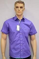 385 X 579 126.5 Kb Мужские сорочки от K*r*i*s T*e*l
