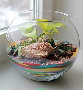 558 X 600 129.7 Kb 'Сад в стекле'. Композиции из растений.
