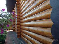 1300 X 971 413.0 Kb 1300 X 971 430.2 Kb 1300 X 971 487.1 Kb Шлифовка, покраска, конопатка, герметизация деревянных домов и бань. Профессионально!
