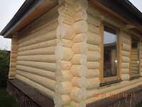 1300 X 975 340.5 Kb 1300 X 867 351.2 Kb Шлифовка, покраска, конопатка, герметизация деревянных домов и бань. Профессионально!