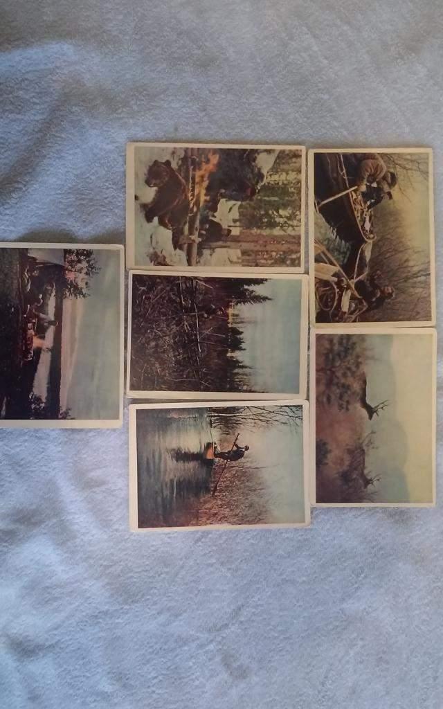 Аукционы коллекционеров открыток, утро хорошего настроения