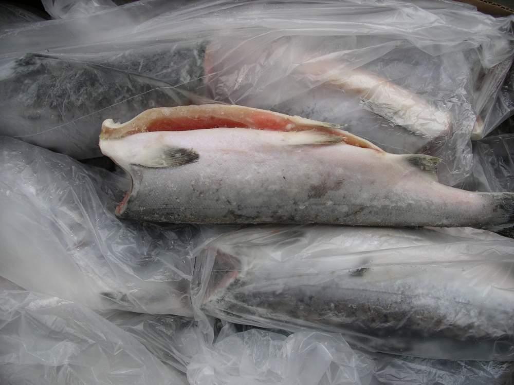 Купить рыбу кижуч в москве